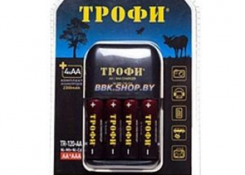 Зарядное устройство ТРОФИ TR-120 4 слота